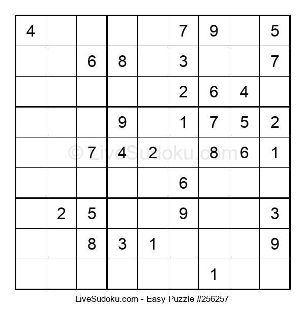 Beginners Puzzle #256257
