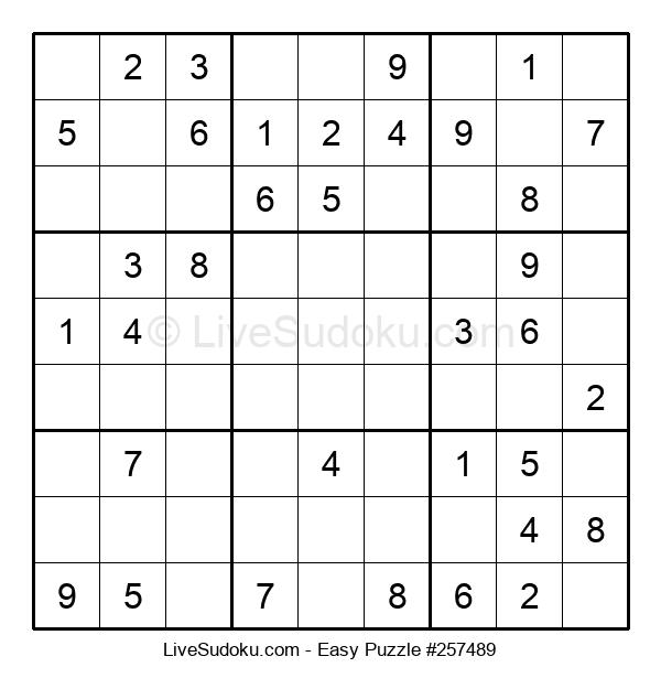 Beginners Puzzle #257489