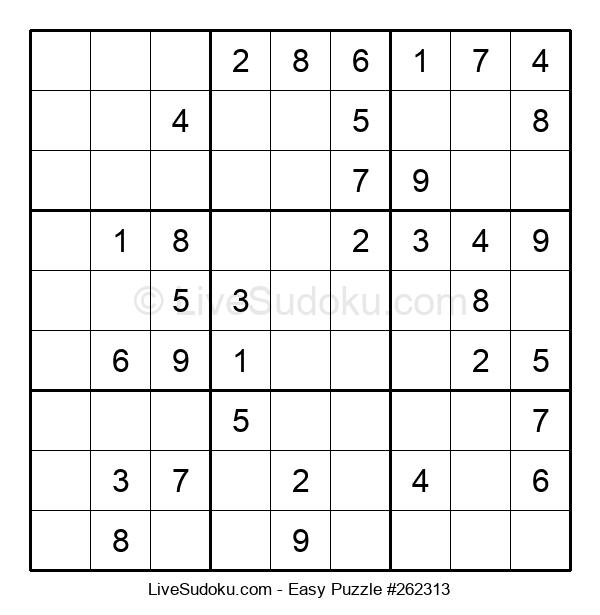 Beginners Puzzle #262313