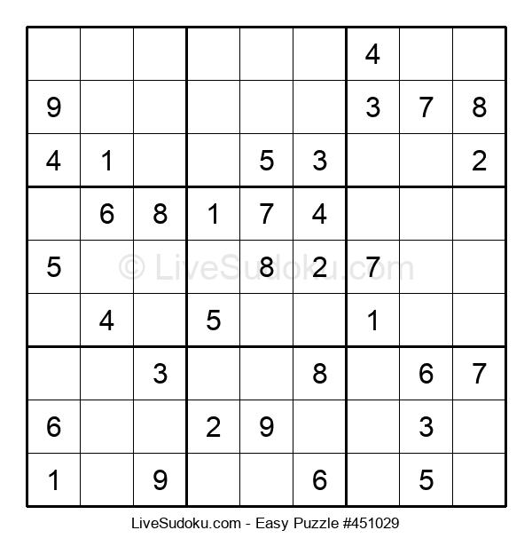 Beginners Puzzle #451029