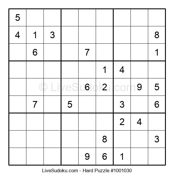 Hard Puzzle #1001030