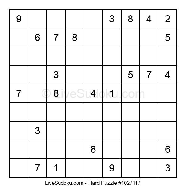 Hard Puzzle #1027117