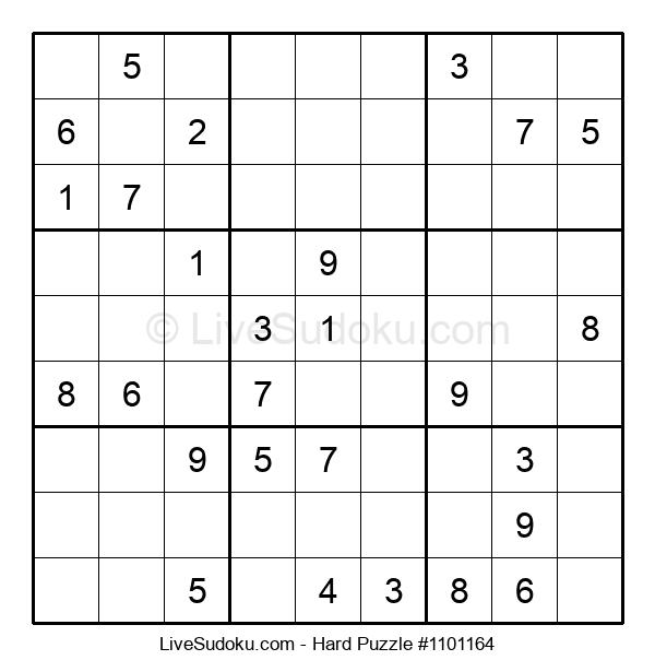 Hard Puzzle #1101164