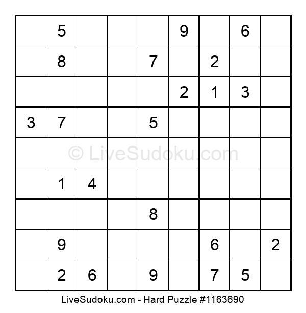 Hard Puzzle #1163690