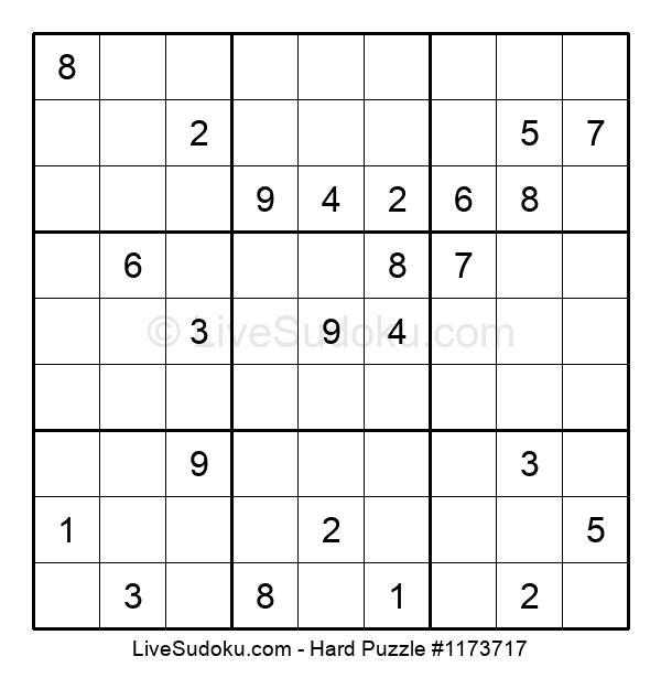 Hard Puzzle #1173717