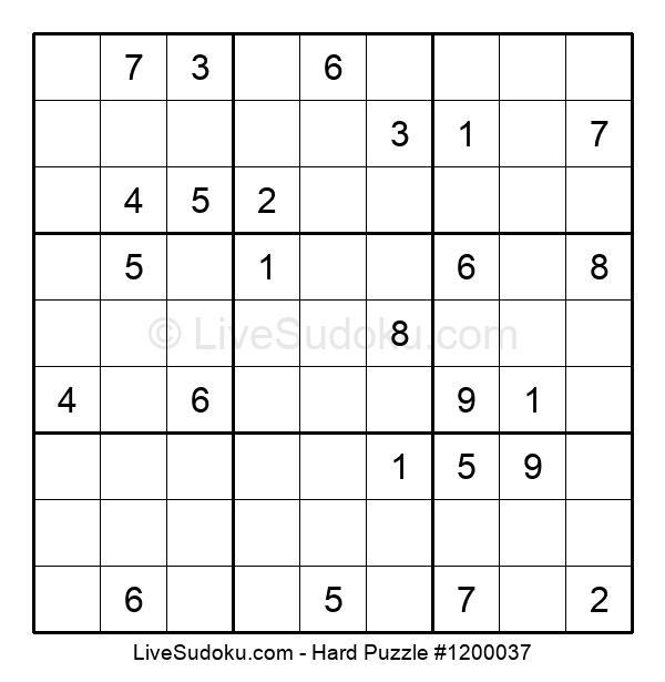 Hard Puzzle #1200037