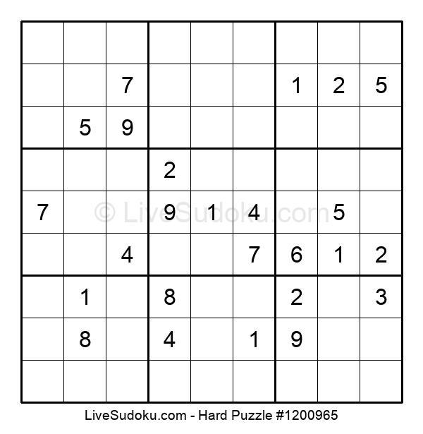 Hard Puzzle #1200965
