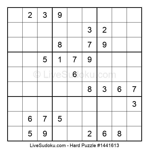 Hard Puzzle #1441613