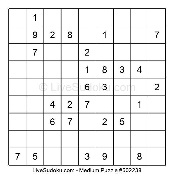 Medium Puzzle #502238