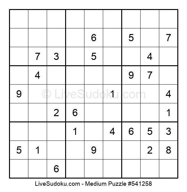 Medium Puzzle #541258