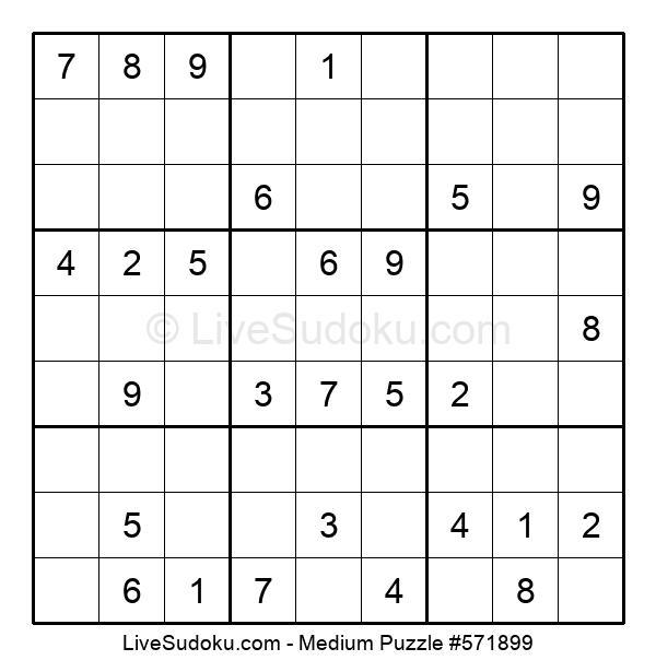 Medium Puzzle #571899