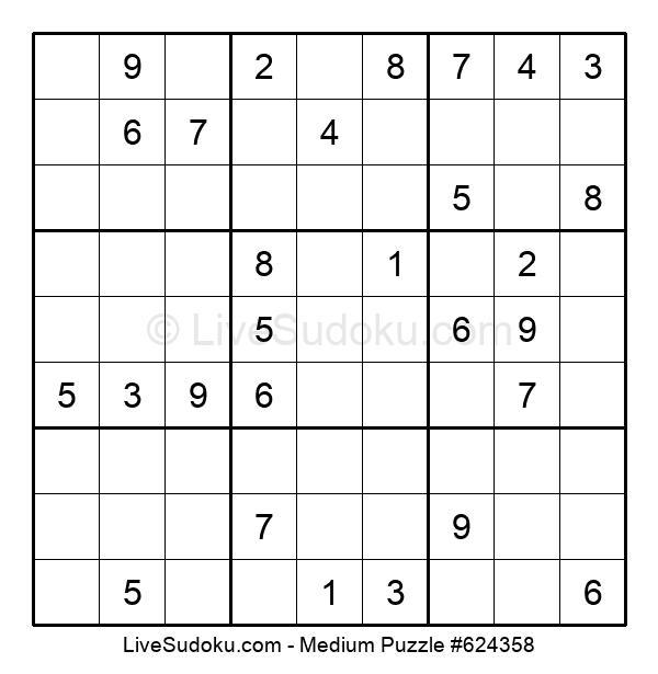 Medium Puzzle #624358