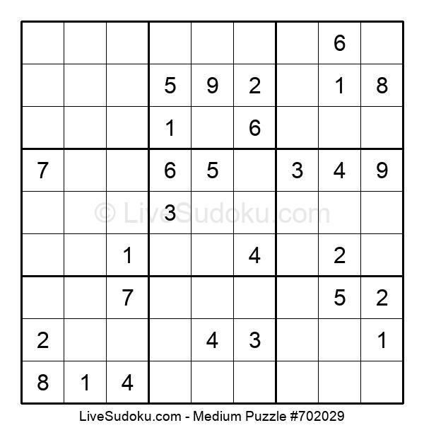 Medium Puzzle #702029