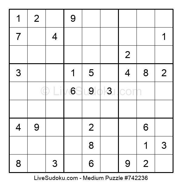 Medium Puzzle #742236