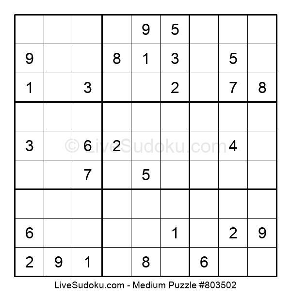 Medium Puzzle #803502