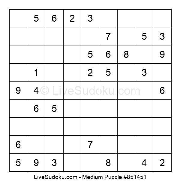 Medium Puzzle #851451