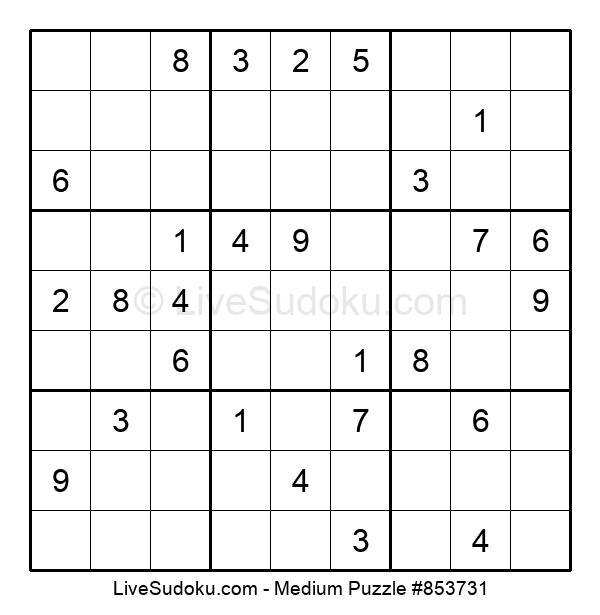 Medium Puzzle #853731