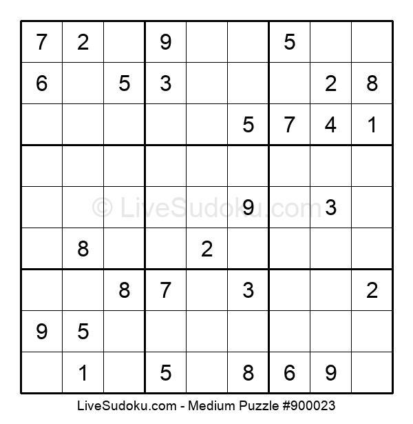 Medium Puzzle #900023