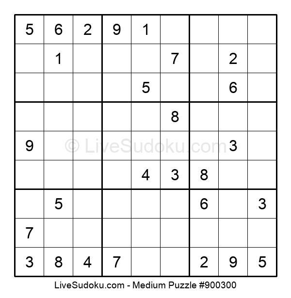 Medium Puzzle #900300