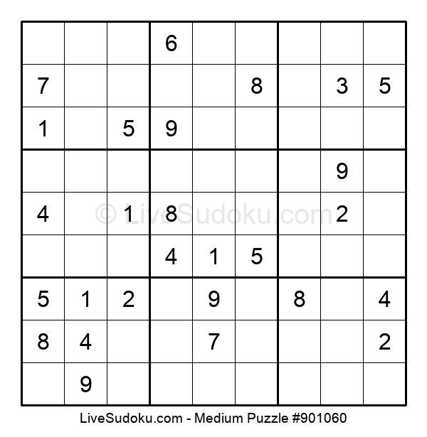 Medium Puzzle #901060