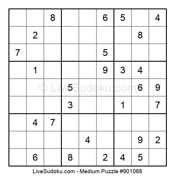 Medium Puzzle #901066
