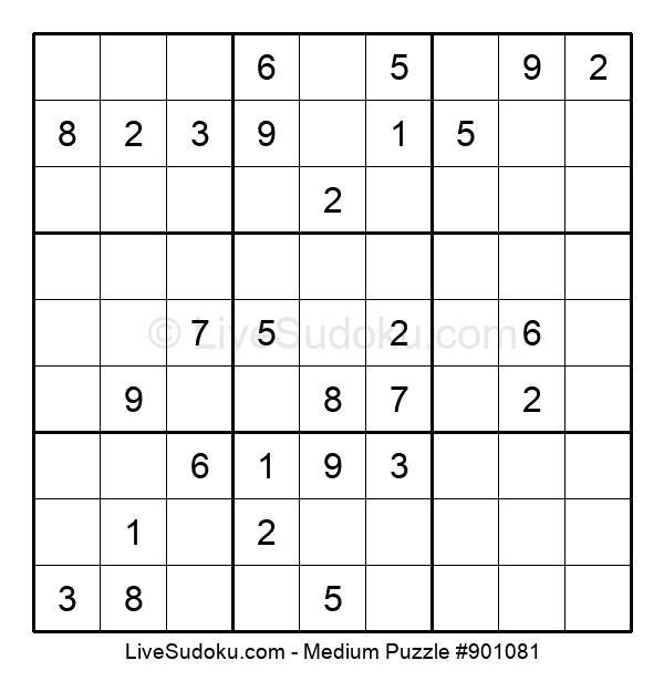 Medium Puzzle #901081