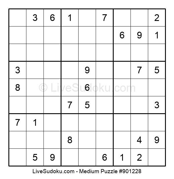 Medium Puzzle #901228